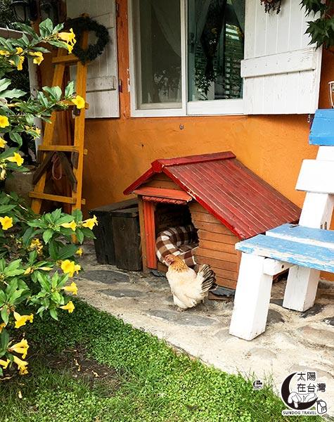 宜蘭貓天空寵物民宿