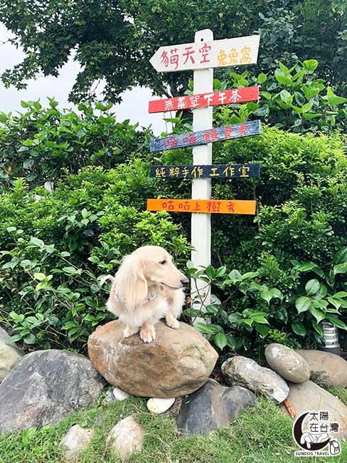 宜蘭寵物旅遊-貓天空民宿