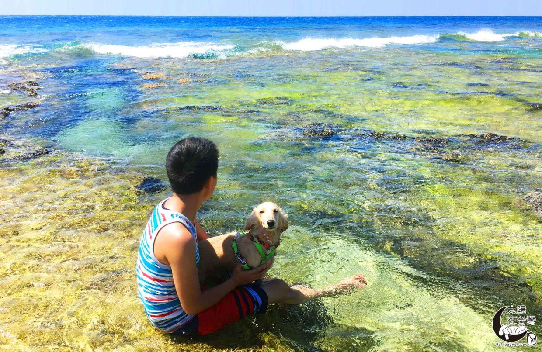 綠島寵物旅遊祕境之旅-太陽在台灣-曹郡梃