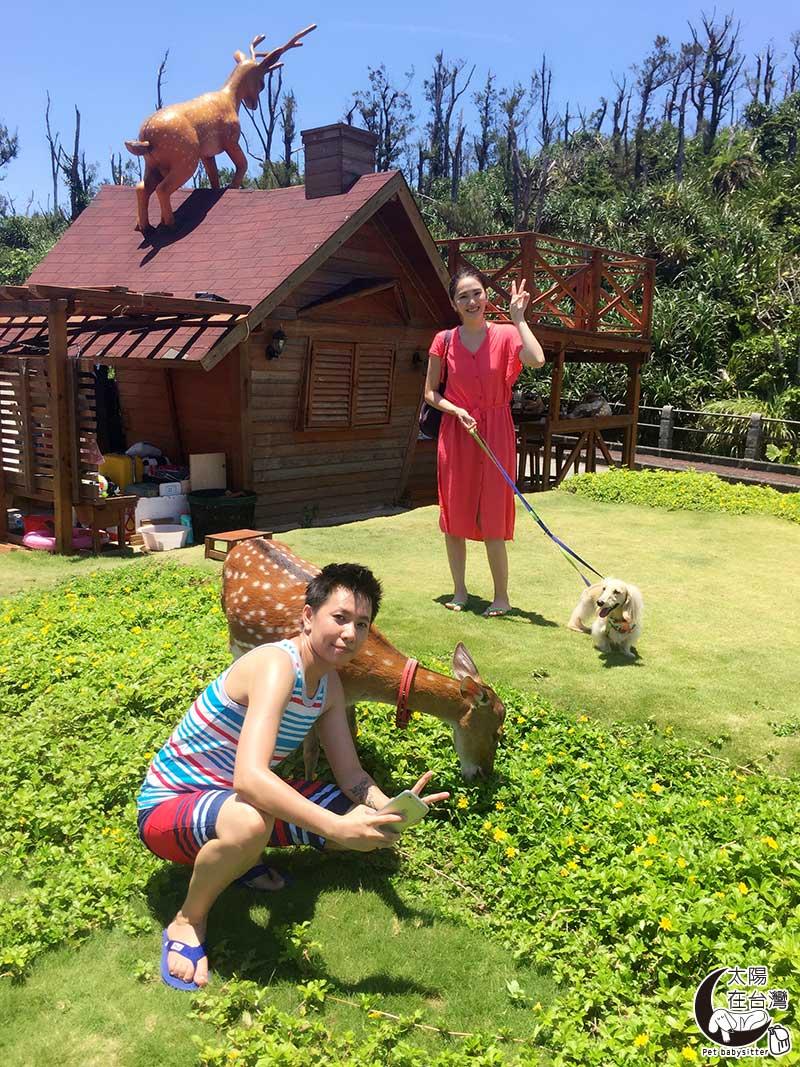 綠島民宿梅花鹿-綠島寵物旅遊-太陽在台灣