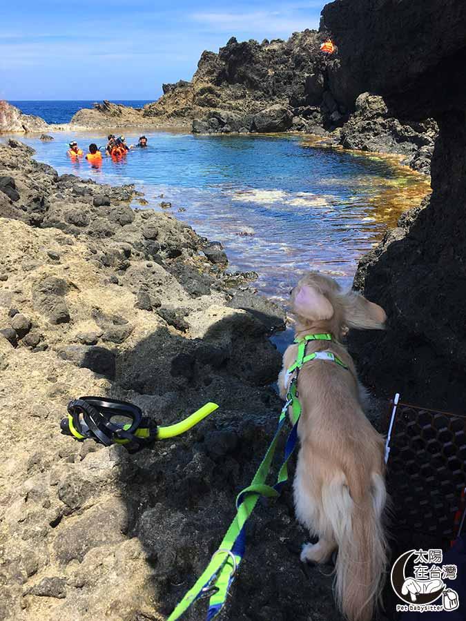 綠島秘境-綠島寵物旅遊-太陽在台灣