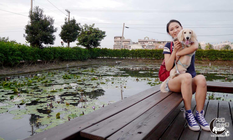 花蓮旅遊住宿蓮花池