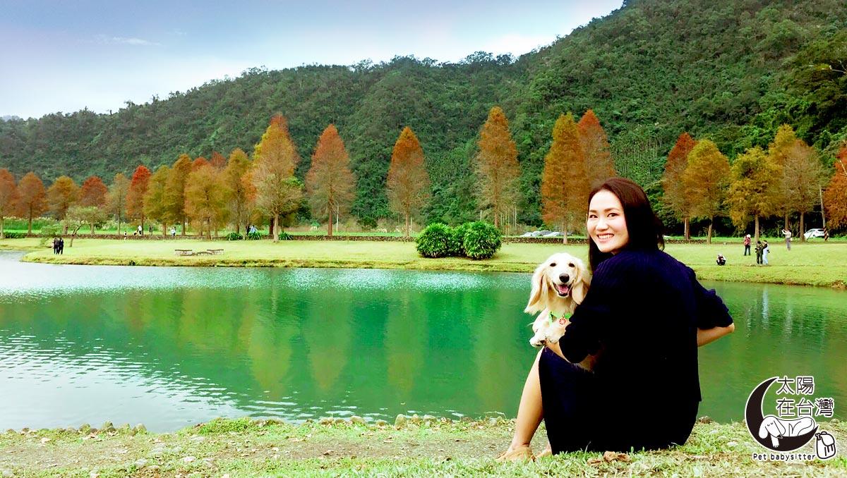 宜蘭寵物旅遊-落羽松拍美照-太陽在台灣