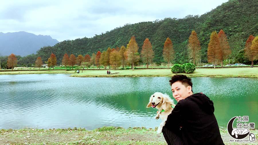落羽松-蜊埤湖-太陽在台灣